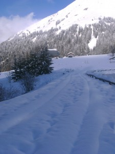 with the snow forecast it may look like this soon in Morzine
