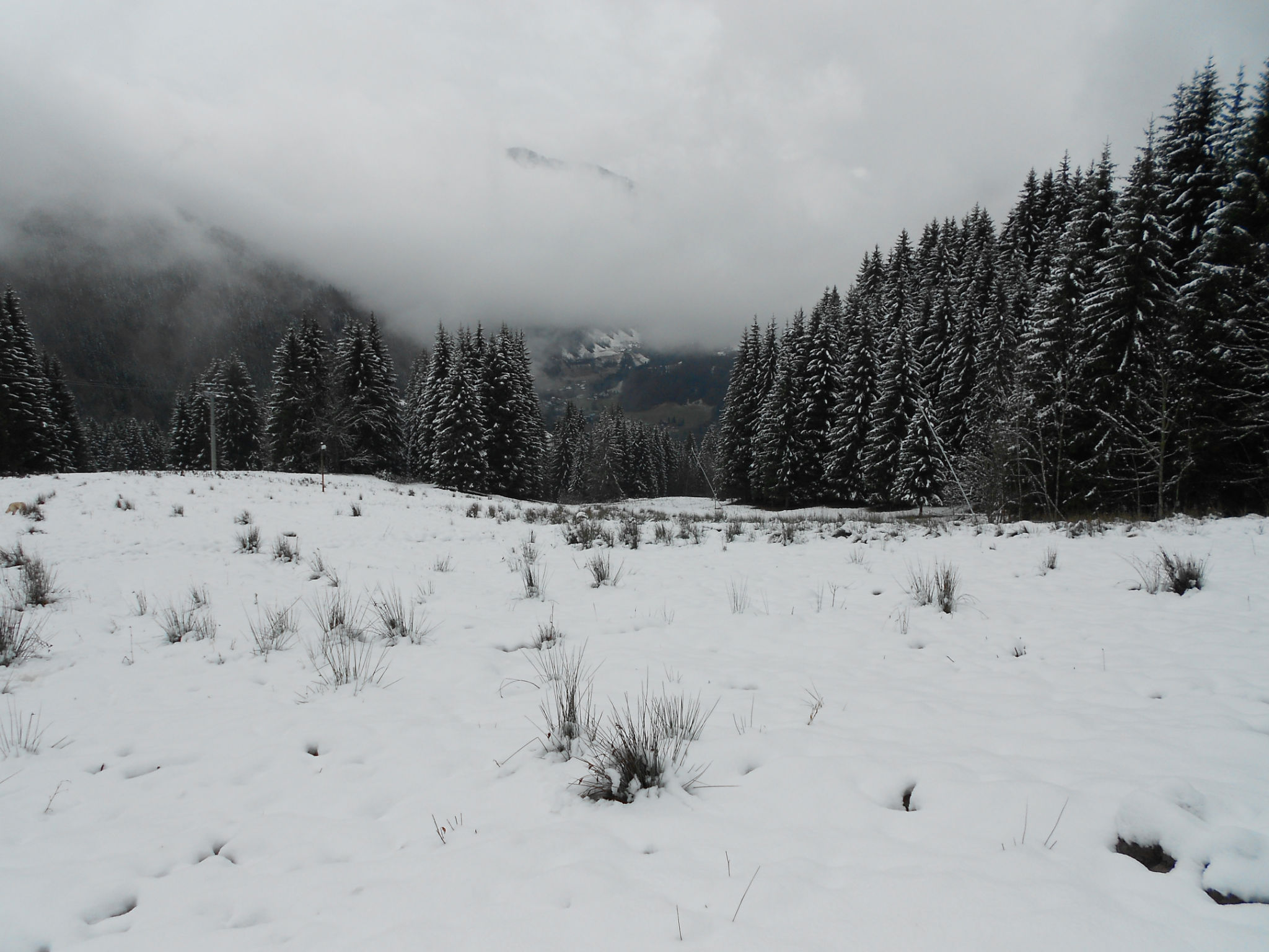 Snow in Morzine